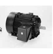 E852, 145TTTN6505, 2 Hp, 575, 3 PH., 145T FR., 3600 Rpm